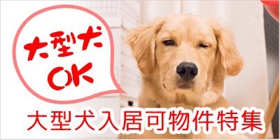 大型犬飼育可の賃貸物件特集